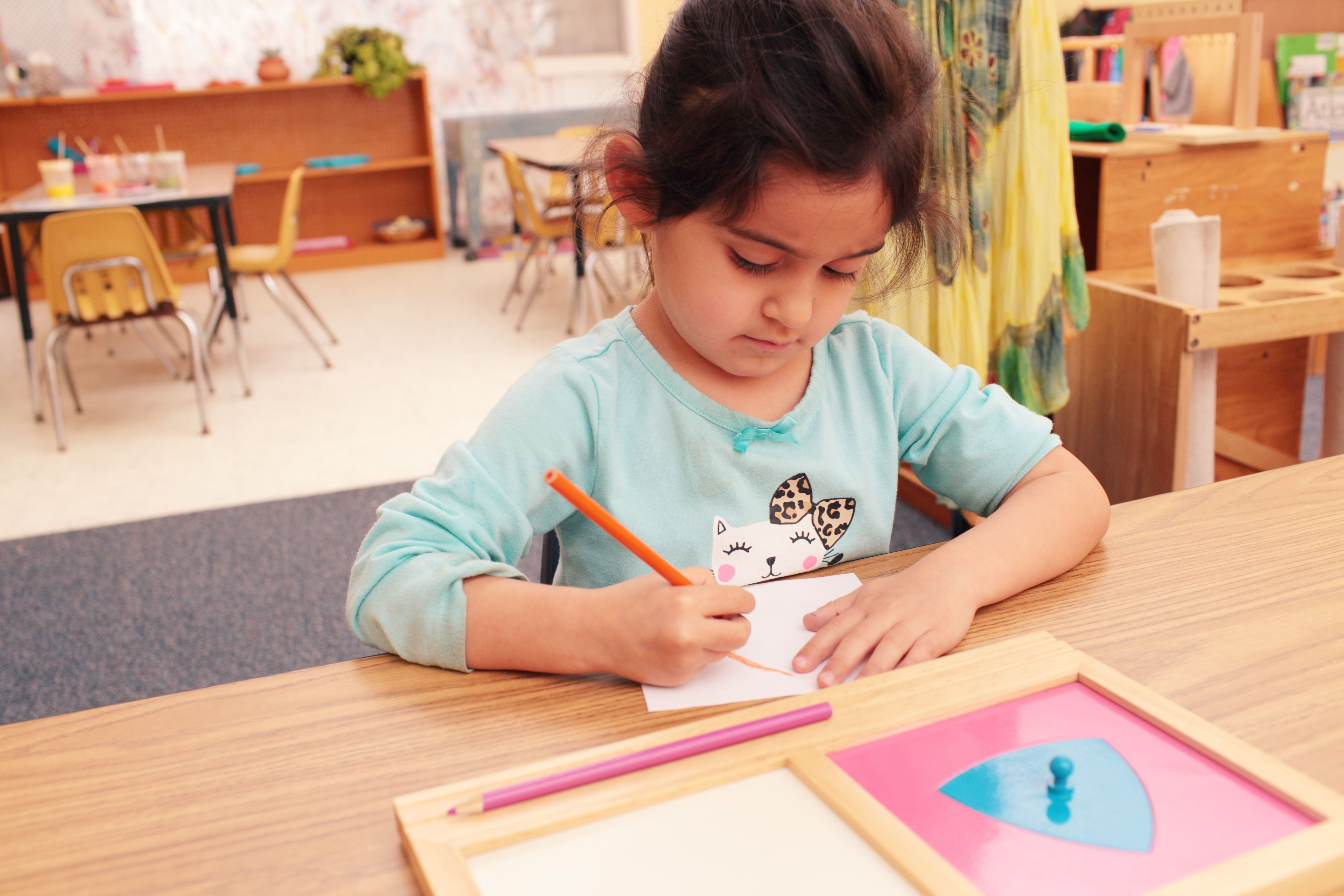 steps to learning preschool math and language steps to learning preschool goleta ca 849